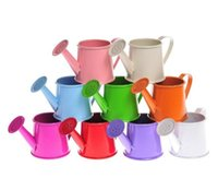 Wholesale Watering Can Wedding Favor - Free shipping watering can shaped wedding bucket favor box for garden wedding MYY