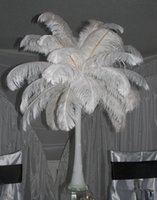 Wholesale natural feather ostrich plumes for sale - Group buy Natural White Ostrich Feathers Plume Centerpiece for Wedding Party Table Decoration Many Sizes for You To Choose