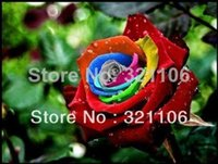 Wholesale Rose Bushes - Mystic Rainbow Rose Bush Flower Seeds 200 Stratisfied Seeds Free Shipping