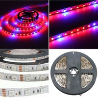Wholesale Red Light Hydroponic - 5050SMD LED Flexible Strip Grow Tape Light 4 Red 1 Blue Aquarium Greenhouse Hydroponic Plant Growing Lamp 60led m 2M 4M 5M