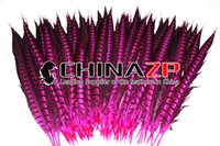 Wholesale in CHINAZP Factory Size cm inch Good Quality Dyed Hot Pink Lady Amherst Tail Pheasant Feathers