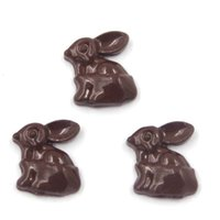 Wholesale Chocolate Living Locket - chocolate bunny charms, for living locket wholesale , 20pcs lot, free shipping--98 wholesale