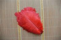 ingrosso piuma di struzzo rossa per matrimoni-Trasporto libero rosso piume di struzzo 5-8 pollici centrotavola di nozze decorazione rifornimenti del partito fornitura di eventi matrimoni artigianato decor