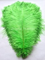 Wholesale Colored Ostrich Feathers Wholesale - Lime Green 300pcs lot Ostrich Feathers Plumes Craft feather Wedding Decoration DIY colored feathers dor sale