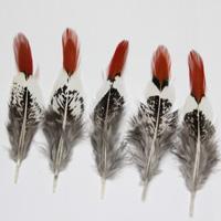 penas do faisão vermelho venda por atacado-Frete grátis 100 pcs de alta qualidade bonito Cobre penas vermelhas penas de galinha penas de Faisão 5-15 cm / 2-6 polegadas diy penas