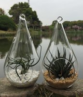 Wholesale Planter Set - 2pcs set air plant holders 8 x 15cm teardrop glass terrariums hanging glass planter vase,tealight holder for wedding decoration,garden decor