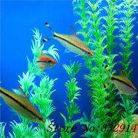 Wholesale Aquatic Fishing - mixed 200seeds bag plants pond aquarium fish tank seeds mixed cultivation of aquatic plants , water purification seeds
