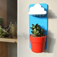 Wholesale New Hot Flowerpot Wall hung Flower Pot Wall Hanging Baskets Clouds Basin Watering Organic Flower Soil as Gift