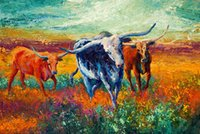 Wholesale Color Life Paint - Giclee bison head color study oil painting arts and canvas wall decoration art Oil Painting on Canvas longhorn steer marion rose MRR056