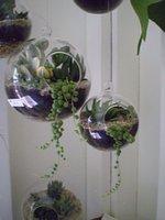 Wholesale Globe Terrariums - 3PCS Set Glass Globe Terrariums,Hanging Candles Holder&Wedding Candlestick,Garden Decor Home Decor,Wedding Supplies