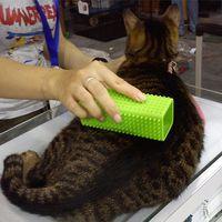 ingrosso pettini di capelli in silicone-Pet Dog Puppy Cat Bath Brush Pettine Depilazione Soft Silicone Sticky Hair Tool Coniglio Gatti Cani Massaggio Grooming