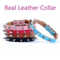 Wholesale Leather Harness Teddy - Leather Small Dog Collars Pet collar Teddy Neck Bichon Frise harness Chihuahua Leash Cat