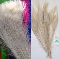 ingrosso decorazioni di pavone bianco-Commercio all'ingrosso 100 pz / lotto bianco coda di pavone occhi piume 10-12 pollici di alta qualità pavone pennacchio diy composizioni floreali