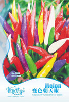 Wholesale Rainbow Heaven - 20 pcs bag Rainbow Pod pepper Seeds Vegetables , Facing heaven pepper Rare Beautiful Discolor Chillies seeds