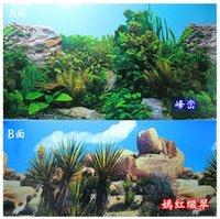 Wholesale Picture Aquarium - 48CM High Double Sided Aquarium Landscape Poster Fish Tank Background Picture Wall Decor 100CM Long