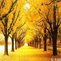 Wholesale Canvas Scenic Paintings - Autumn Scenic Maple Tree 5X7ft Thin Vinyl Backdrops Computer Printed Children Wedding Photography Background Studio Backdrop