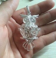 Wholesale 6pcs mmx29mm Antique Bronze Owl Wishing Box charms pendant and Antique Silver Owl Whishing Box charm Silver Owl charm