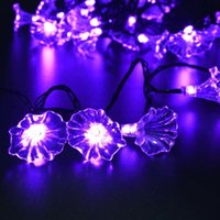Solarstars Solar Powered String Light 30 LED Morning Glory Flower Blossom Solar Lights Outdoor Garden Home Party Holiday Decoração luz
