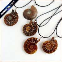 Wholesale Silver Ammonite - SorcerKeeper Natural Stone Ammonite Fossils Seashell Snail Pendants Ocean Reliquiae Conch Animal Necklaces Statement Men Jewelry 1PCS KS256
