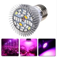 Wholesale New W E14 E27 GU10 LED Grow Lamp Bulb for Flower Plant AC85 V W E27 lm Full Spectrum Led Growing Lamp Plant Light
