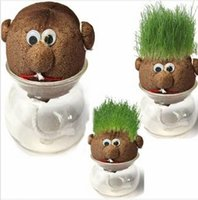 Wholesale Mini Grass Head - Free Shipping !!! Mini DIY Magic Grass Plant Pot Grass Head Doll Indoor Potted Plant Your Best Choice