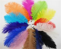 Wholesale Hot Sale cm inches Multi Color Ostrich Dyed Feathers Wedding Party Decoration DIY Clothing Supplies IF3