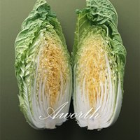 Wholesale Winter Seeds - Chinse Cabbage Yellow Heart Vegetable 500 Seeds Easily home-grown Hardy Vegetables for winter