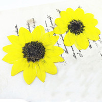 Wholesale Diy Large Flowers - Large flower press Yellow Color Size 5CM For Cell Phone Case DIY Plant Specimen