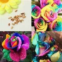 colorful rose seeds toptan satış-Tohumlar Çiçek Tohum 20 Adet Renkli Gökkuşağı Gül Sevgililer Sevgilisi Çiçek Tohumları Kapalı Bahçe Ev Bitki Dekor