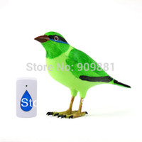 Wholesale Home Wireless Bird Remote Control Chime Doorbell Alarm Wireless Digital Doorbell High Quality Hot Sale