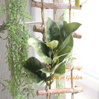 ingrosso lascia le piante-Commercio all'ingrosso di vendita al dettaglio 2 colori magnolia foglie foglie artificiali fiori artificiali decorazione della casa piante verdi spedizione gratuita MW17675