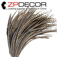 Wholesale Wedding Pheasant Feathers - ZPDECOR 80-90cm(32-36 inches) Natural Long Lady Amherst Pheasant Tail Feather Wedding Table Centerpieces for Art Design