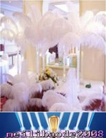 Wholesale Pink Wedding Ostrich Feathers - 14-16 Inch White Ostrich Feather Plume Craft Supplies Wedding Party Table Centerpieces Decoration Free Shipping MYY