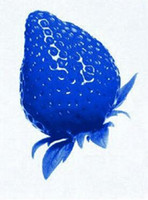 Wholesale 100PCS Pure Natural Organic Blue Strawberry Antioxidant Seeds Delicious Fruit Vegetables Berry Seed New