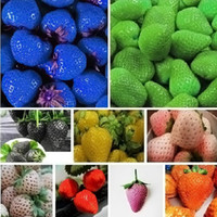 Wholesale Shipping Garden Supplies - 100 piece mix colour strawberry seeds Rare Fragrant Sweet Juicy fruit seeds potted plants home garden supplies Free shipping