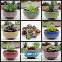 Wholesale Glazed Vases - Wholesale-8Pcs Lot Microlandschaft Mini Succulent Plants Flowers Vase Flowerpot Terrarium Container Mini Bonsai Pots Ceramic Accessories