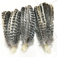 Wholesale beautiful precious wild turkey tail feathers inches cm Many Sizes for You To Choose