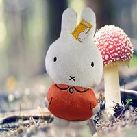 Wholesale Cheapest Plush Toy - Miffy Cute Rabbit Baby Soft Plush Toys Brinquedos 34CM Cheapest Price Best Gift for Kids
