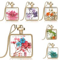 Wholesale Dried Flowers Glass - Purple Dried Flower Collares Glass Square Pendant Necklace Gold Color Long Chain Statement Necklace Women Fine Jewelry