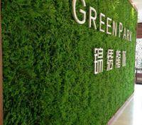 ingrosso tappeto erboso-Erba artificiale artificiale di decorazione della parete artificiale gigante di Eucaly tappeto di erba artificiale di plastica di bosso 60cm * 40cm trasporto libero
