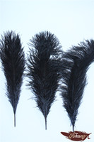 Wholesale Earthing Products - New Products 2016 Craft Ostrich Feather 20-25cm For Brithday Party Wedding Decorations