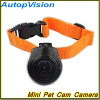 Wholesale Dog Collar Recorder - New Mini Pet Camera Dog Cat LCD Video Camera Recorder Pet Products Collar Accessories Free shipping