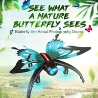Wholesale Butterfly Sensor - 2017 Newest Original JJRC H42WH Butterfly WIFI FPV 0.3MP Camera Pocket Drone Mini Quadcopter G-sensor RC Selfie Drone Helicopter
