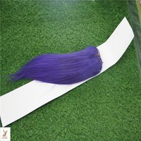lila farbe menschenhaareinschlagfaden großhandel-Lila Farbe Doppelschuss Brasilianische Jungfrau Gerades Haar Weben 100% Brasilianische Menschliche Remy Haarverlängerung 10-30