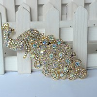 60 Pcs A Lot Peacock Gold Plated Broche Broches de strass para pinos femininos Scarf Clip Collar Dicas Hijab Pin