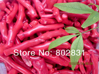 koralle porzellan halskette großhandel-Wholesale Asian Natural Blut Red Coral Zweig Anhänger Halskette