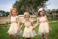 Wholesale Western Dresses For Girls - Cute Champagne Flower Girl Dresses for Western Outdoor Wedding Knee Length Tulle Sheer Crew Neck Sash Tulle 2016 Little Girls Birthday Dress