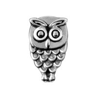 Wholesale Glass Memory Living Locket Letters - 20pcs lot Free shipping antique silver Alloy Owl charms for glass living memory locket