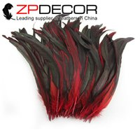 Wholesale Long Rooster Tail Feathers - ZPDECOR 30-35cm(12-14inch) Part Dyed Red High Quality Cheap Long Rooster Tail Feathers for Burlesque Fancy Dress Party