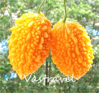 Wholesale gourd bags - Momordica Charantia Fruit Bitter Gourd Melon Very Sweet 5 Seeds   Bag Easy to Grow from Seeds Heirloom Fruit Seed Delicious